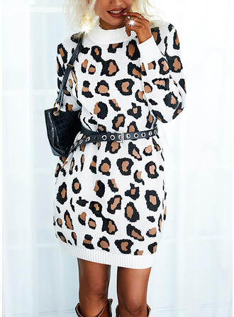 Leopard Long Sleeves Casual Dresses